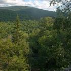 Долина ручья Малый Казамаш и хребет Баскак
