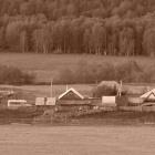 Деревня Николаевка