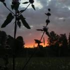 Закат на Белой
