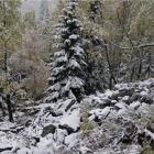 Снег.