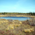 Озеро Круглое малое