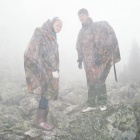 (Ежи...)Верблюды в тумане