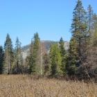 Гора Мерзлый Утес. 29.09.2012